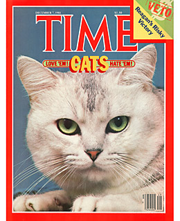 time-cats.jpg